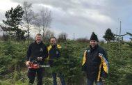 Tannenbaumverkauf ein voller Erfolg